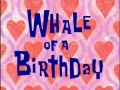 Titlecard-Whale of a Birthday.jpg