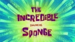 Incredibleshrinkingsponge.jpg