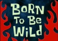 Titlecard-Born To Be Wild.jpg