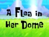 A Flea in Her Dome Title card.jpg