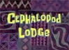 Titlecard-Cephalopod Lodge.jpg